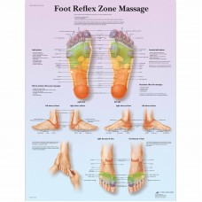 FOOT REFLEX ZONE MASSAGE POSTER VR1810
