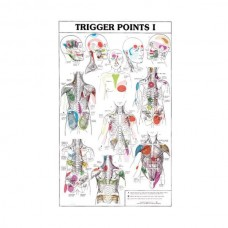 POSTERS TRIGGER POINTS (ΣΕΤ ΤΩΝ 2)
