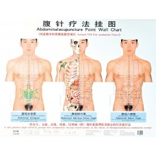 ABDOMINAL ACUPUNCTURE MAP