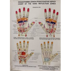 Σχεδιάγραμμα Ζωνών Ρεφλεξολογίας Χεριού