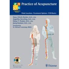 Practice of Acupuncture - Hecker / Steveling / Peuker / Kastner